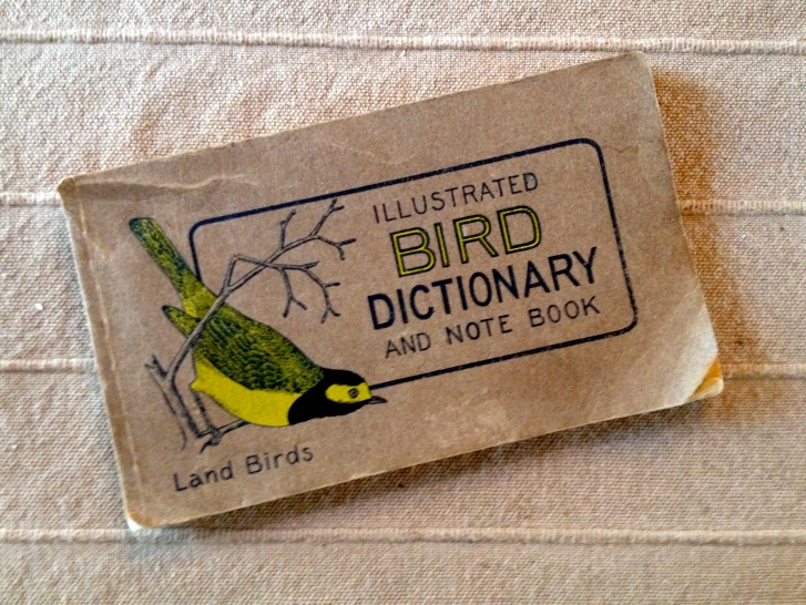 IllustratedBirdDictionary