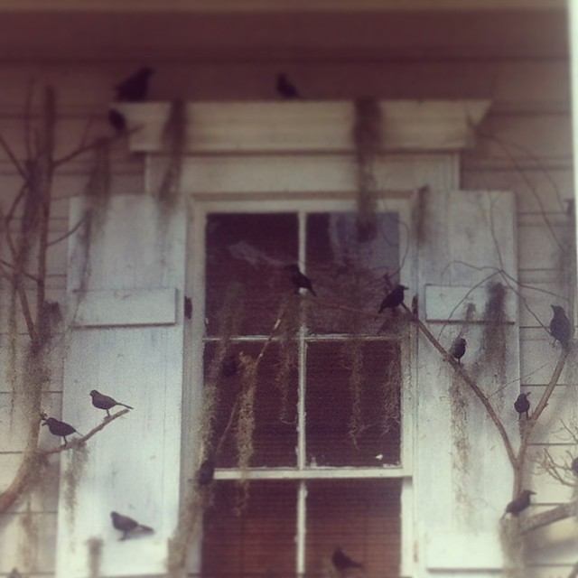 birdshalloweendecorations
